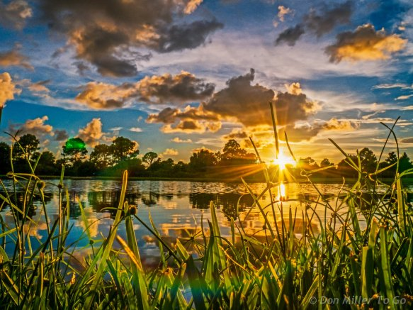 blue_sunset_summer_sky_orange_sun_lake_green-989165.jpg!d